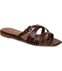 marina shoes summer shoes flat sandals brun kurt geiger london