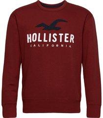 hco. guys sweatshirts sweat-shirt tröja röd hollister
