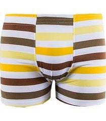 cueca boxer linha noite amarelo listrado
