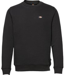 oakport sweatshirt sweat-shirt tröja svart dickies