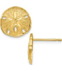 textured sand dollar stud earrings in 14k yellow gold
