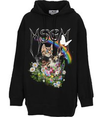 msgm cat hoodie