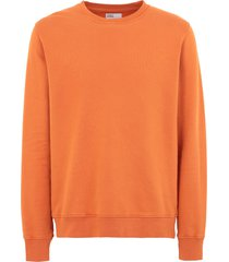 colorful standard sweatshirts