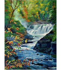 "david lloyd glover genesee river in autumn canvas art - 15"" x 20"""