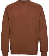 sweatshirts sweat-shirt tröja brun edc by esprit