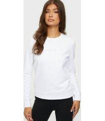 calvin klein ls 3d metallic logo hwk sweatshirts