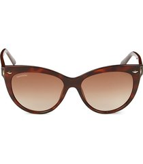 swarovski women's 55mm cat eye sunglasses - dark tortoise