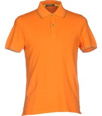 shockly polo shirts