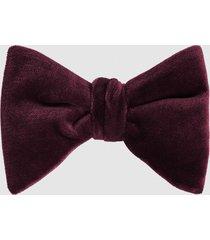 reiss hike - velvet bow tie in bordeaux, mens