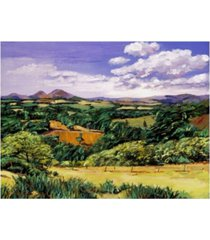 "david lloyd glover rolling hills of scotland canvas art - 37"" x 49"""