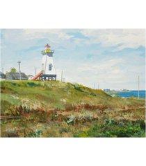 "peter snyder ferry harbour cape tourmentine new brunswick canvas art - 36.5"" x 48"""