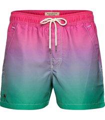 purple grade swim shorts badshorts röd oas