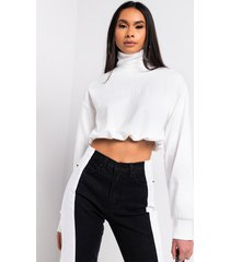 akira simplicity cropped sweatshirt