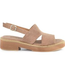 sandalia marrón briganti mujer sipocot