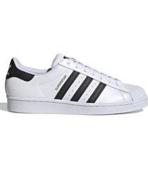 zapatilla blanca adidas originals superstar 7m 19469 blanco