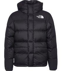 hood logo detail padded jacket