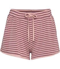 softness shorts shorts lila missya