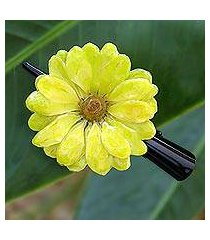 natural flower hair clip, 'yellow aster passion' (thailand)