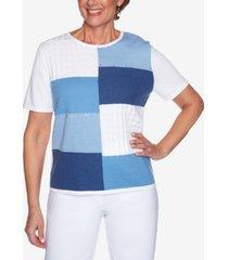 plus size classics colorblock sweater