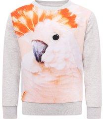 molo grey girl sweatshirt with colorful parrot