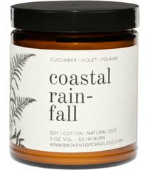 broken top candle co. coastal rainfall soy candle, 9-oz.