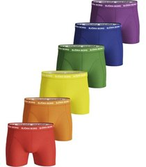 seasonal solid essential 6-pack boxer