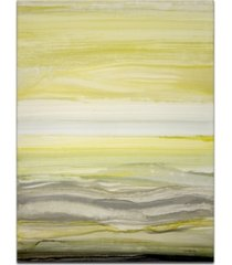 "ready2hangart 'sun and shadow' canvas wall art, 40x30"""