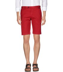 at.p.co shorts & bermuda shorts