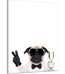 cool sunglasses dog animal picture canvas print wall paintings home decor