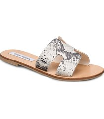 grayson slide shoes summer shoes flat sandals beige steve madden