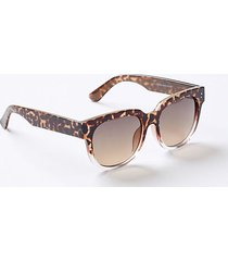loft modern square sunglasses