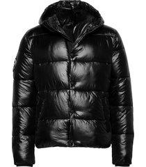 high shine padded jacket gevoerd jack zwart superdry
