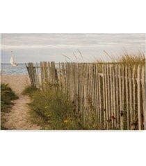 "aledanda along the beach fence ii canvas art - 15"" x 20"""