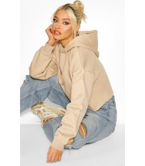 cropped oversized hoodie sweat, stone