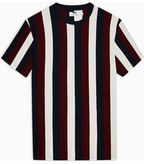 mens multi plum vertical stripe t-shirt