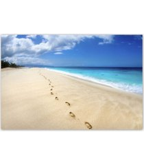 """christopher knight collection - footsteps on the beach canvas art, 18"""" x 24"""""""