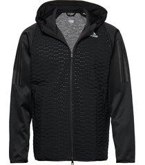 day 2 nite jkt hoodie trui zwart adidas performance