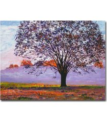 "david lloyd glover 'majestic tree in morning mist' canvas art - 47"" x 35"""