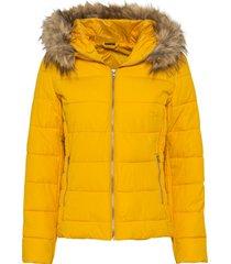 giacca trapuntata leggera con cappuccio (giallo) - bodyflirt