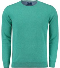 pullover trui rince groen