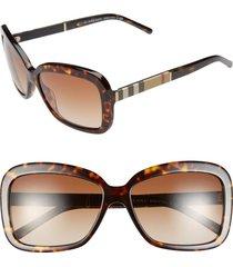 burberry 58mm retro sunglasses in havana at nordstrom