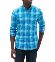 camisa azul turquesa gap