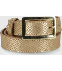 cinturón dorado canadienne
