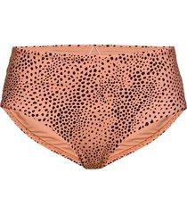 wide side retro bikinitrosa rosa seafolly