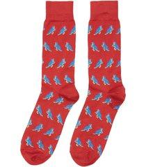 dinosaur print socks