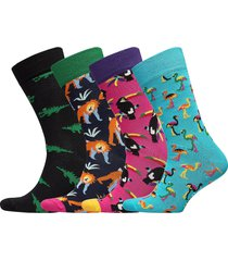 animal gift box underwear socks regular socks multi/mönstrad happy socks