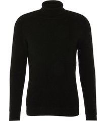 'cecil' cashmere rib knit unisex turtleneck sweater