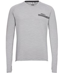 core sence ls tee m t-shirts long-sleeved grå craft