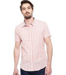 camisa brave soul rosa - calce regular