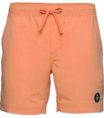 hang five shorts surfshorts orange bula